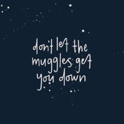 Don't Let The Muggles...